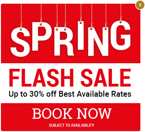 Spring Flash Sale